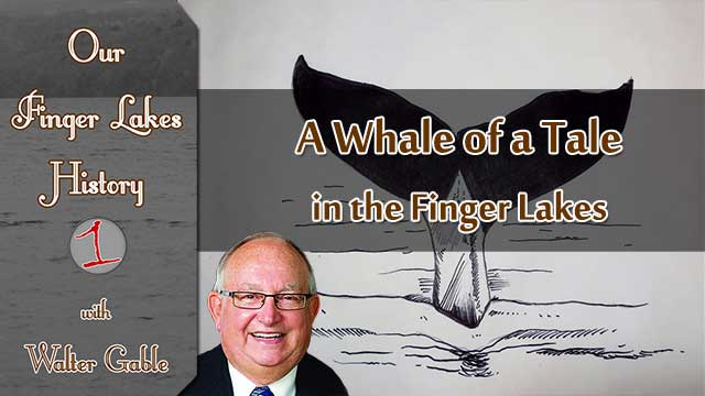 A Whale of a Tale in the Finger Lakes .::. Our Finger Lakes History